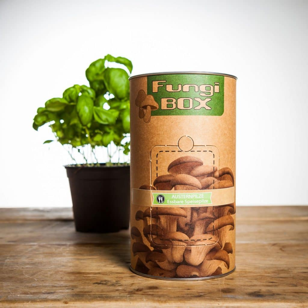 fungi-box-teel-je-eigen-eetbare-paddenstoelen-eaf