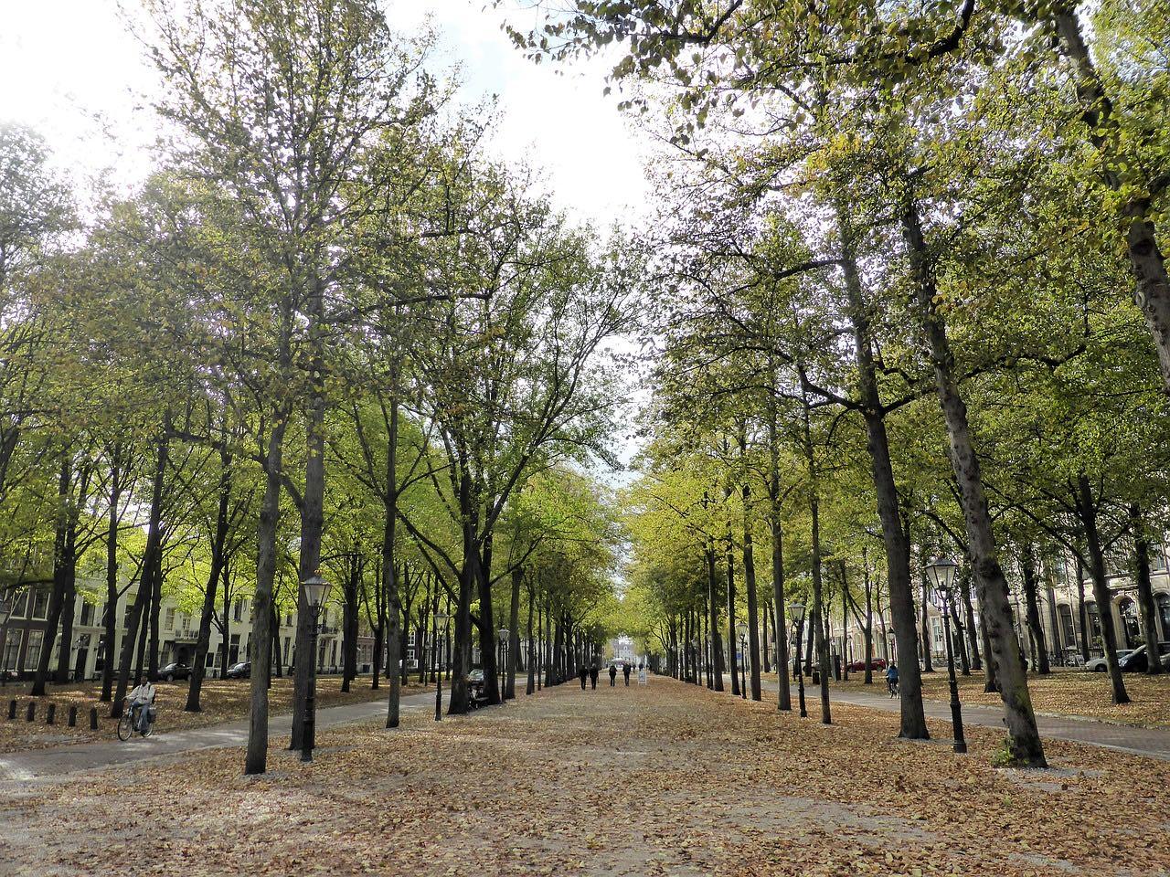 Koninklijke wandeling - Lange Voorhout