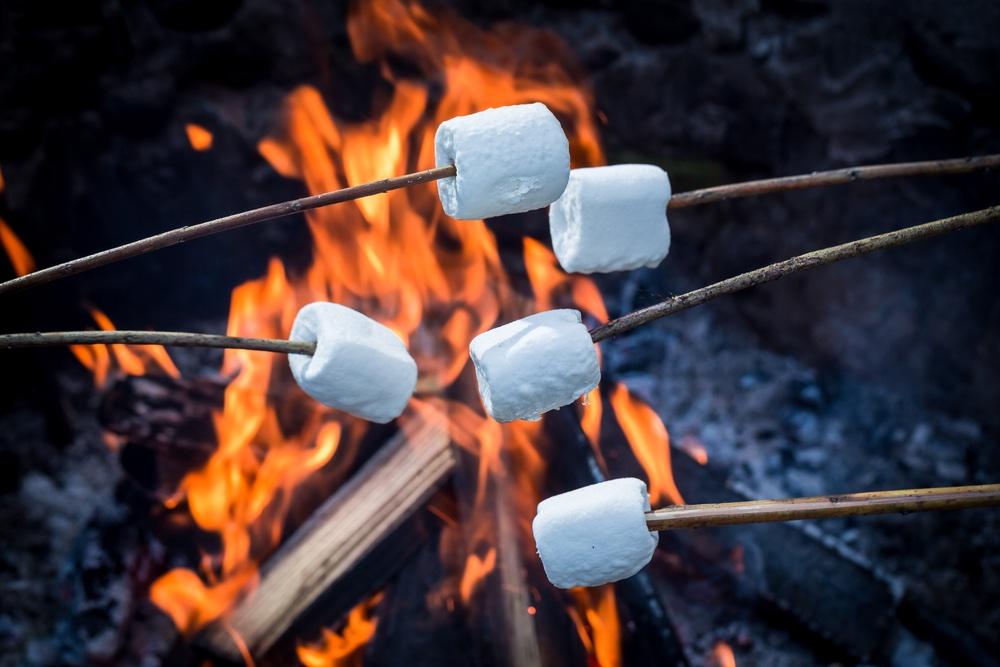 winterbarbecue marhsmallows