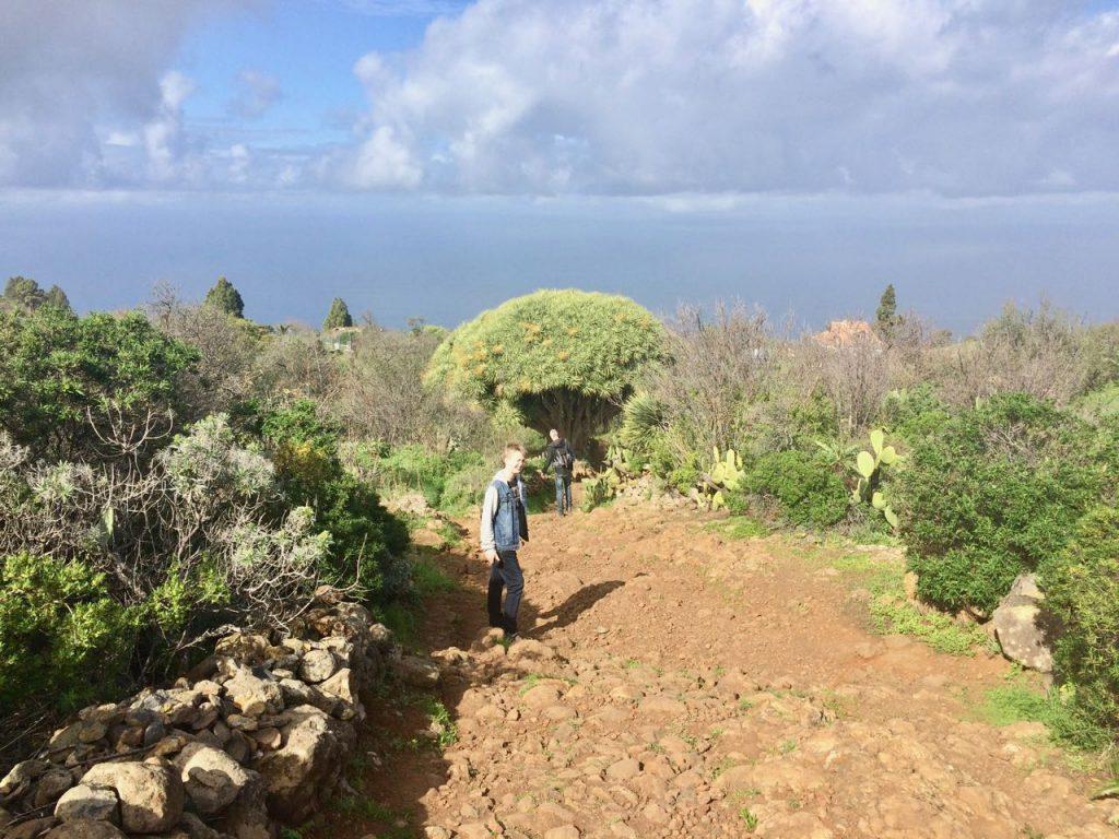 wandelroutes op La Palma