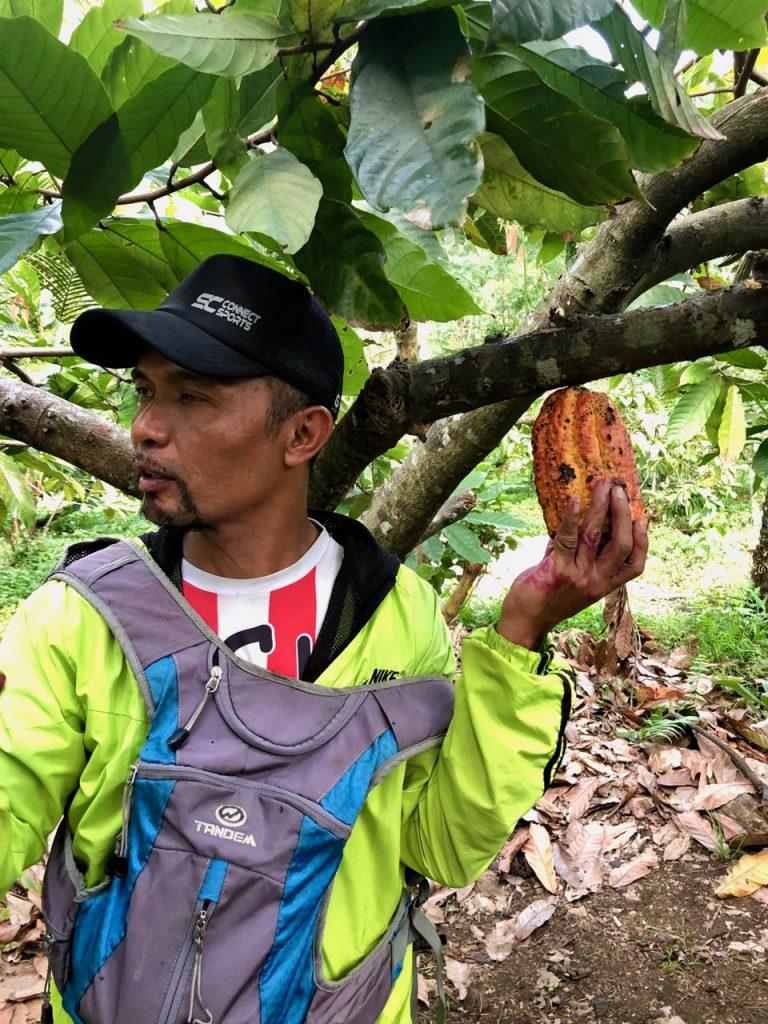 Specerijentour Java- cacao