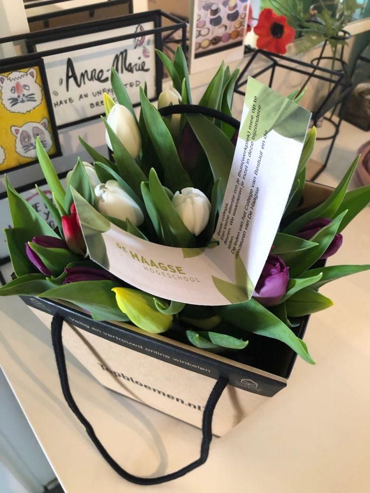 Bloemen van De Haagse Hogeschool