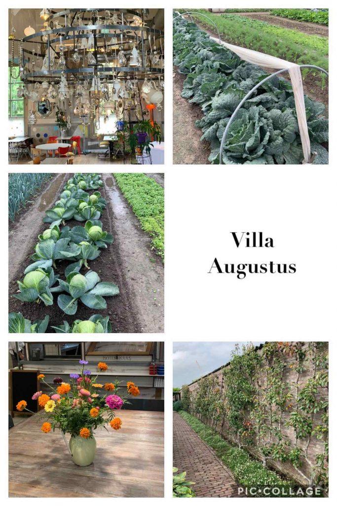 Uit de moestuin - Villa Augustus
