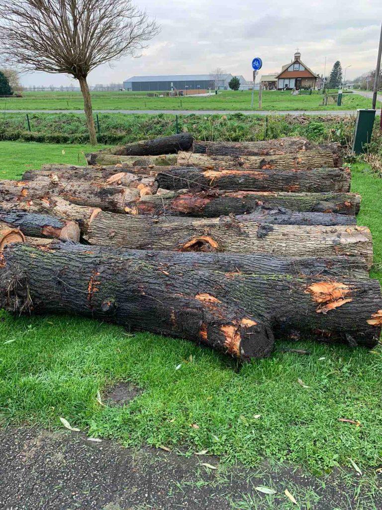 Uit de moestuin hout