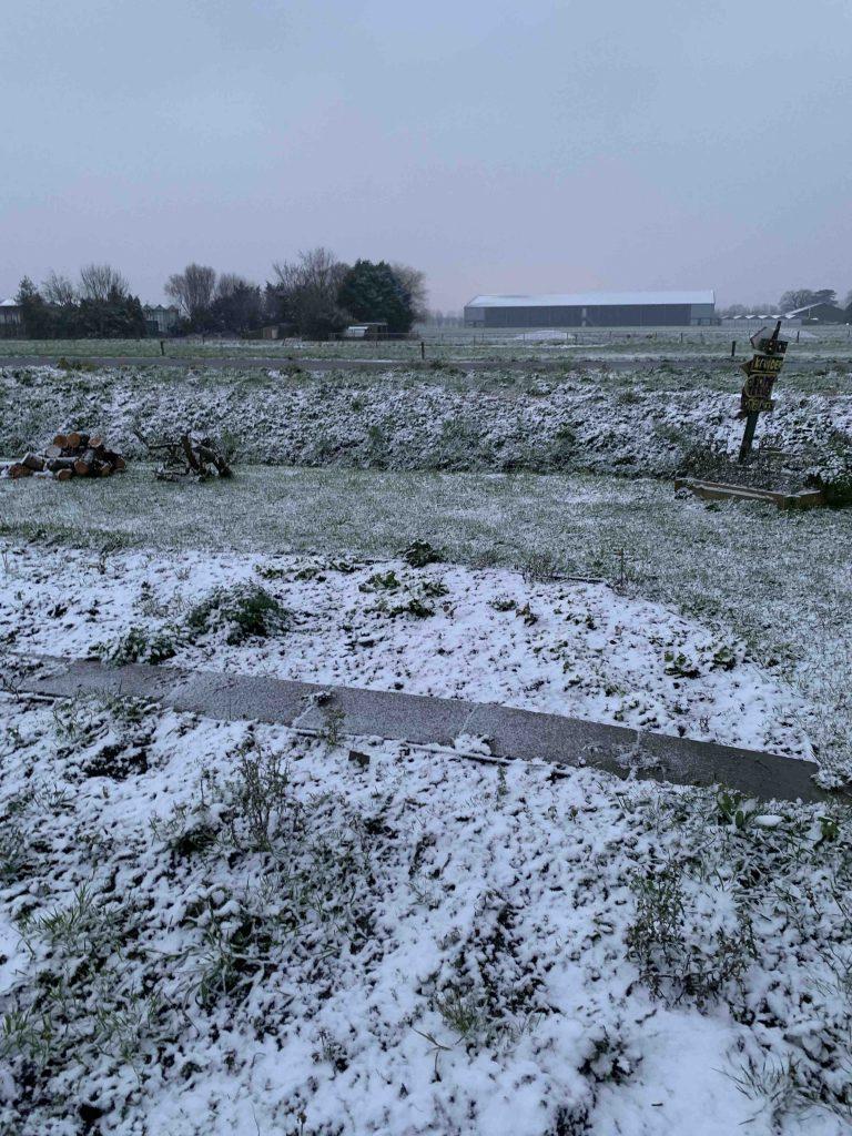 de moestuin in de sneeuw
