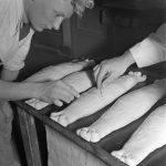 Het Nederlands bakboek en recept Duivekater