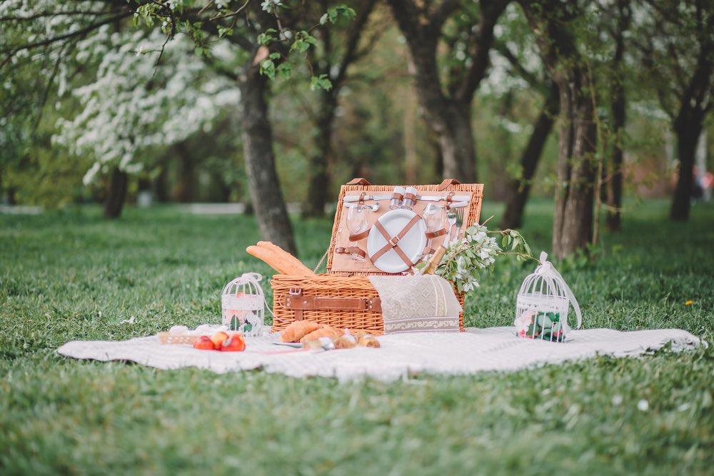 de lekkerste picknick gerechten